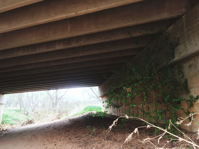 Outdoors Bridge - Man Made Structure No People Day Connection Architecture Tree Hiking Landscape Beauty In Nature Nature