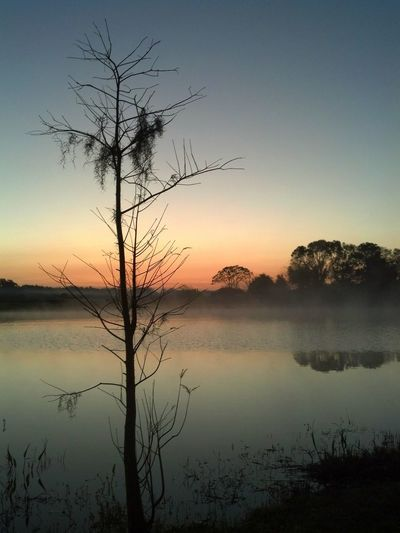 Just another Florida sunrise... Water Reflection Landscape Tree Lake Outdoors No People Sky Nature Florida Winter Reflections In The Water Sunset Beauty In Nature Sunrise Reflection Sunrise Bare Branches Silouette & Sky Peace And Tranquility Peaceful Morning Sunrise Florida Sunrise Tranquility Water Reflection Sky Nature Breathing Space