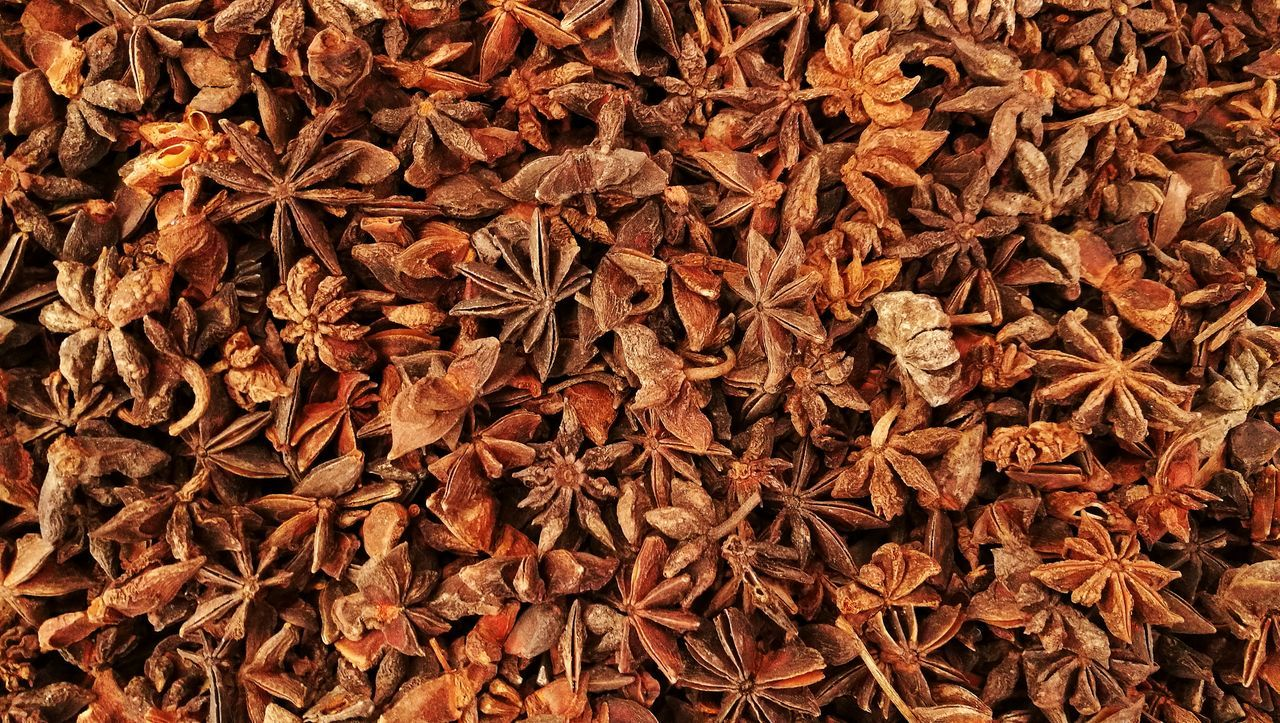 Star Anise Star Aniseed Staranise Star Anise Seed Chinese Star Anise Badiam Indian Spices Spice Illicium Verum Flavor Backgrounds Abundance Brown Large Group Of Objects Pattern Textured  Nature Oganic