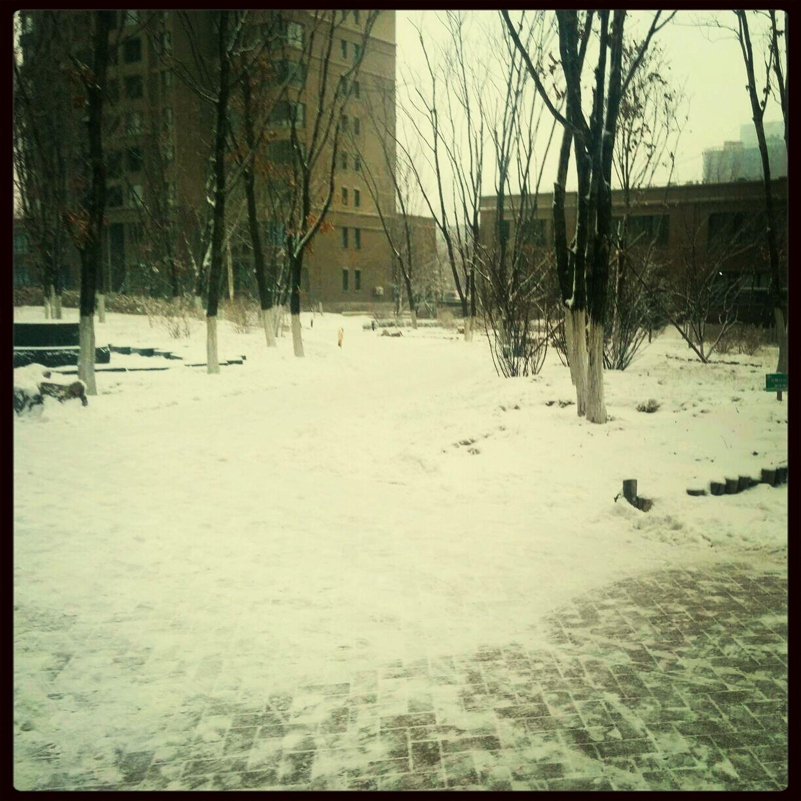 又一场大雪