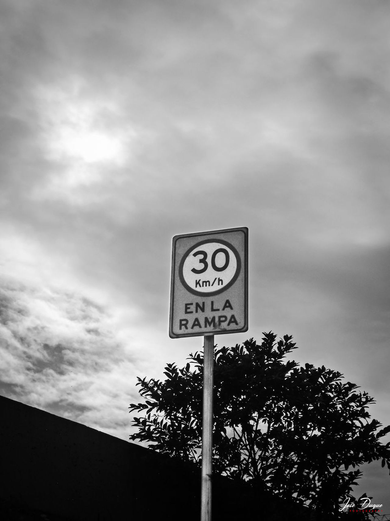 Black & White Black And White Blackandwhite Caracas City Cloud - Sky Communication Day Fujifilm Guidance Low Angle View Nature No People Outdoors Road Sign Sky Speed Limit Sign Streetphotography Text Tree Venezuela Warning Sign