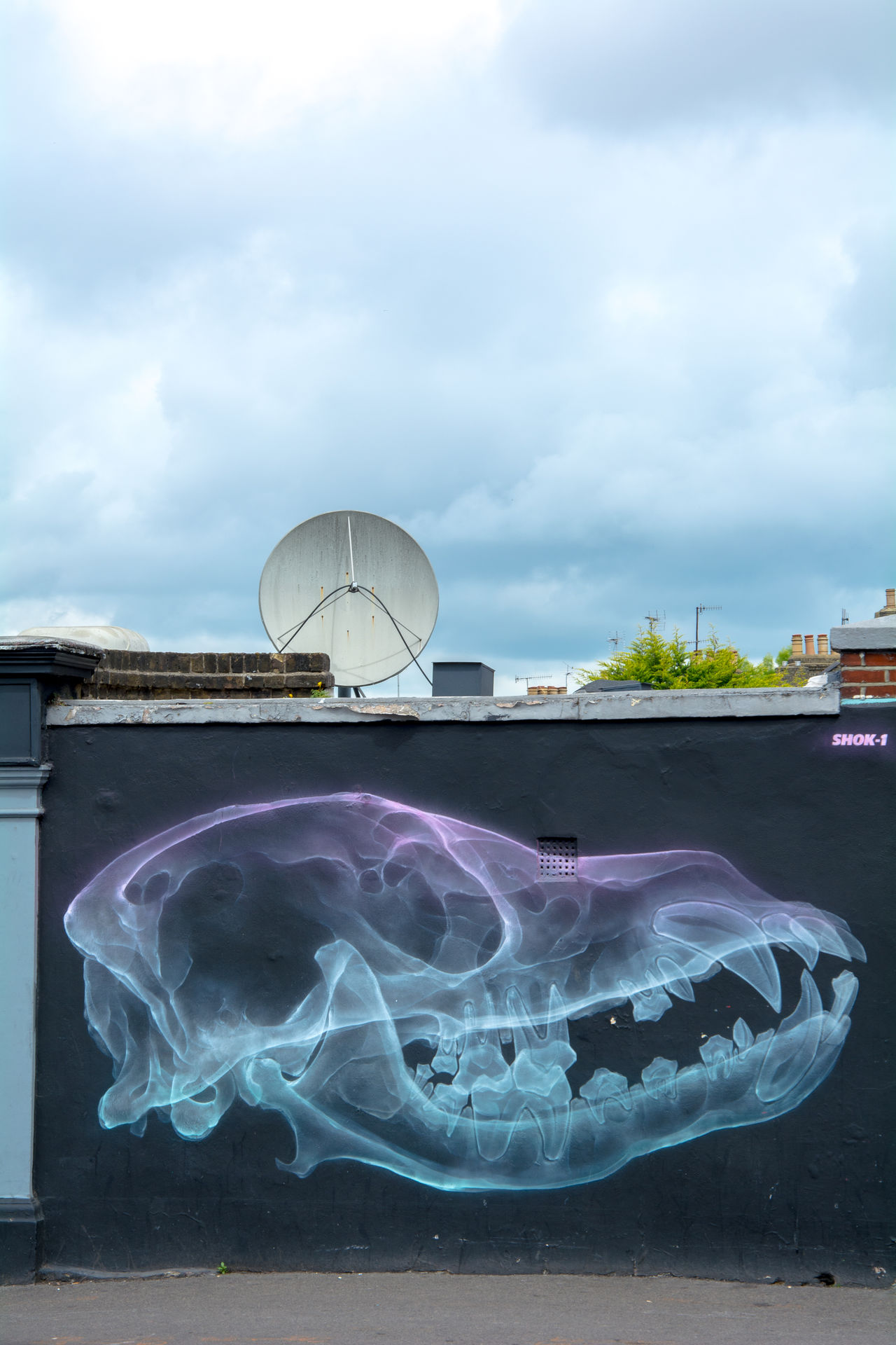 Animal ArtWork Carnivorous Dog-skul Drawing EyeEmNewHere Graffiti Hip-Hop London Mammal Mural No People Painting Parabola Skull Skull Art Street The Bell  Travel Wall Wall Art Waltham Forest Council X-Ray X-ray Art