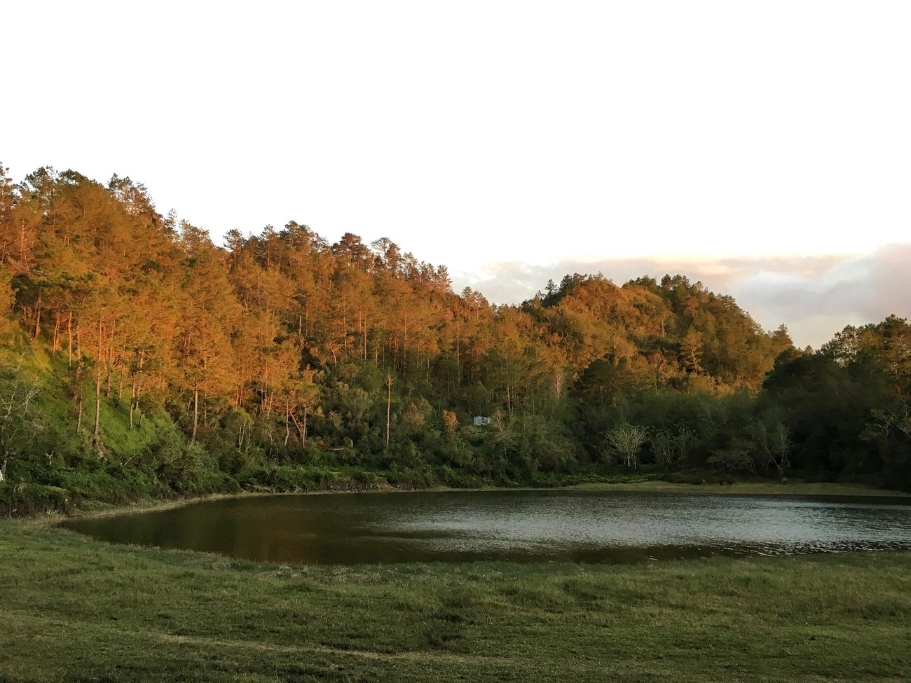 Lake Danum. Tree Nature Autumn Water Scenics Change Clear Sky Landscape Beauty In Nature No People Outdoors Tranquility Day Lake Sky Grass EyeEm Nature Lover Eyeem Philippines