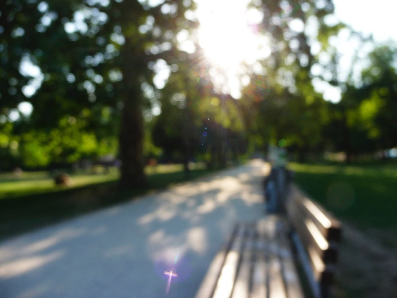 Defocused Image Of Bench By Road