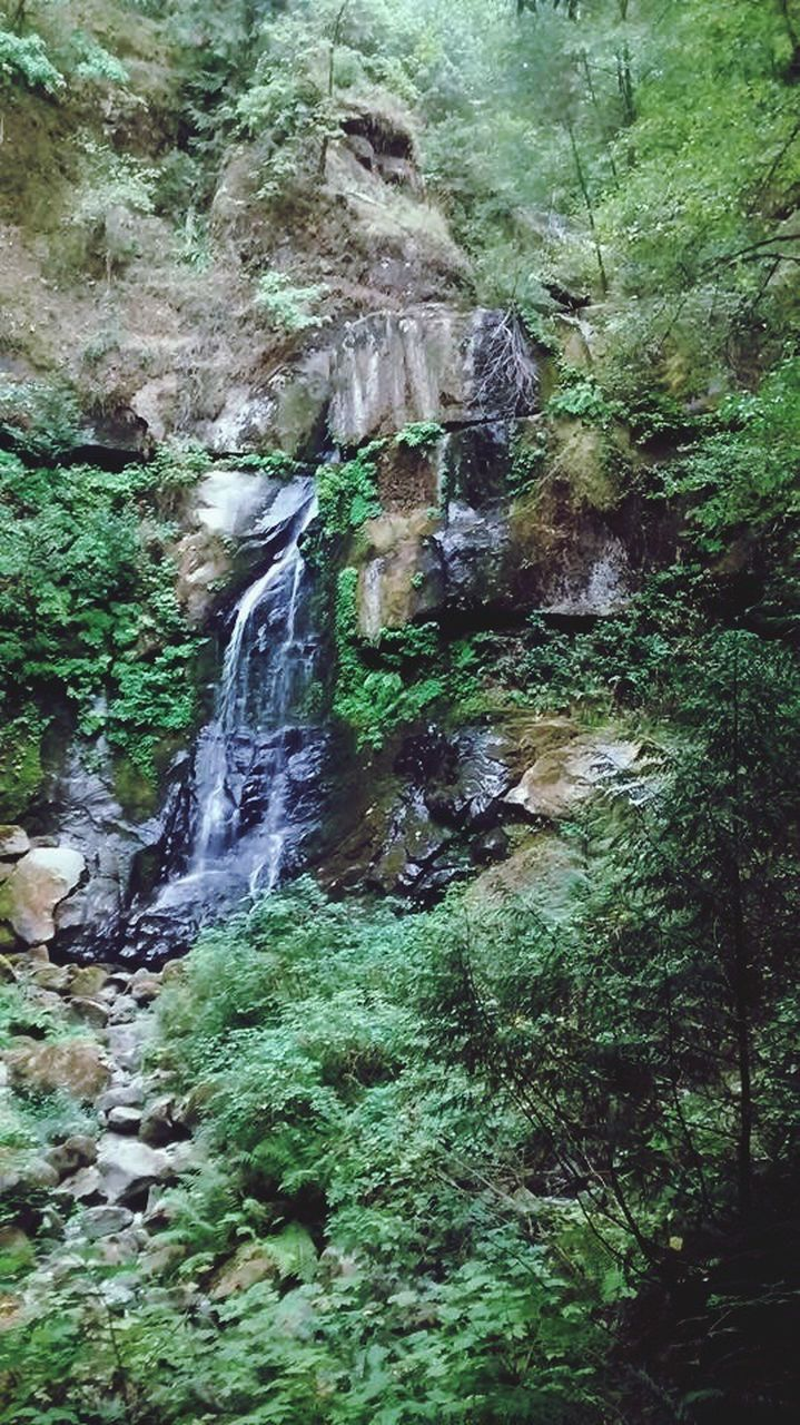 waterfall, rock - object, nature, rock formation, beauty in nature, no people, water, scenics, forest, day, outdoors, tranquil scene, motion, tranquility, tree