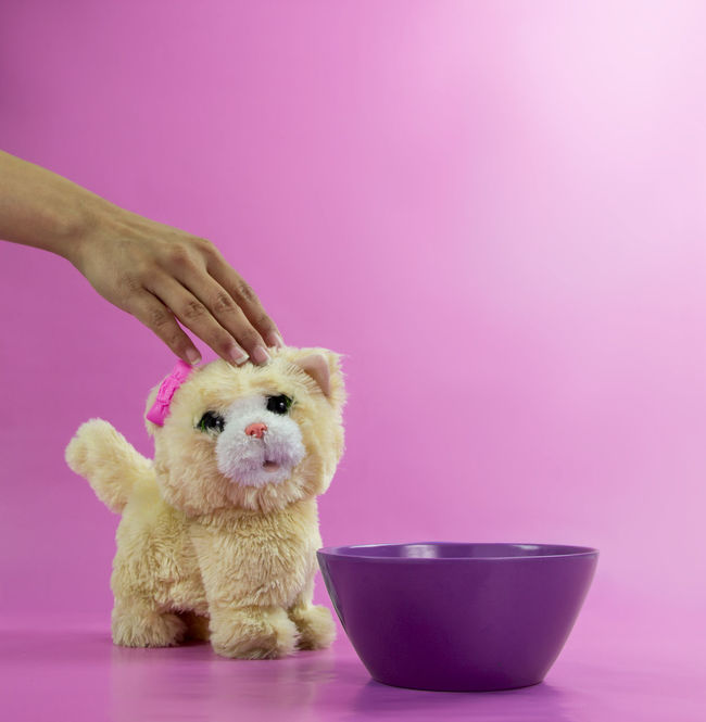 Practicing my Lighting Techniques . Lights Set Design Staging Love Still Life Art Bright Colors Digital Studio Kitty Kitty Cat Cat Pink Purple Milk Bowl Fun Pets Pet Pop Art Canon