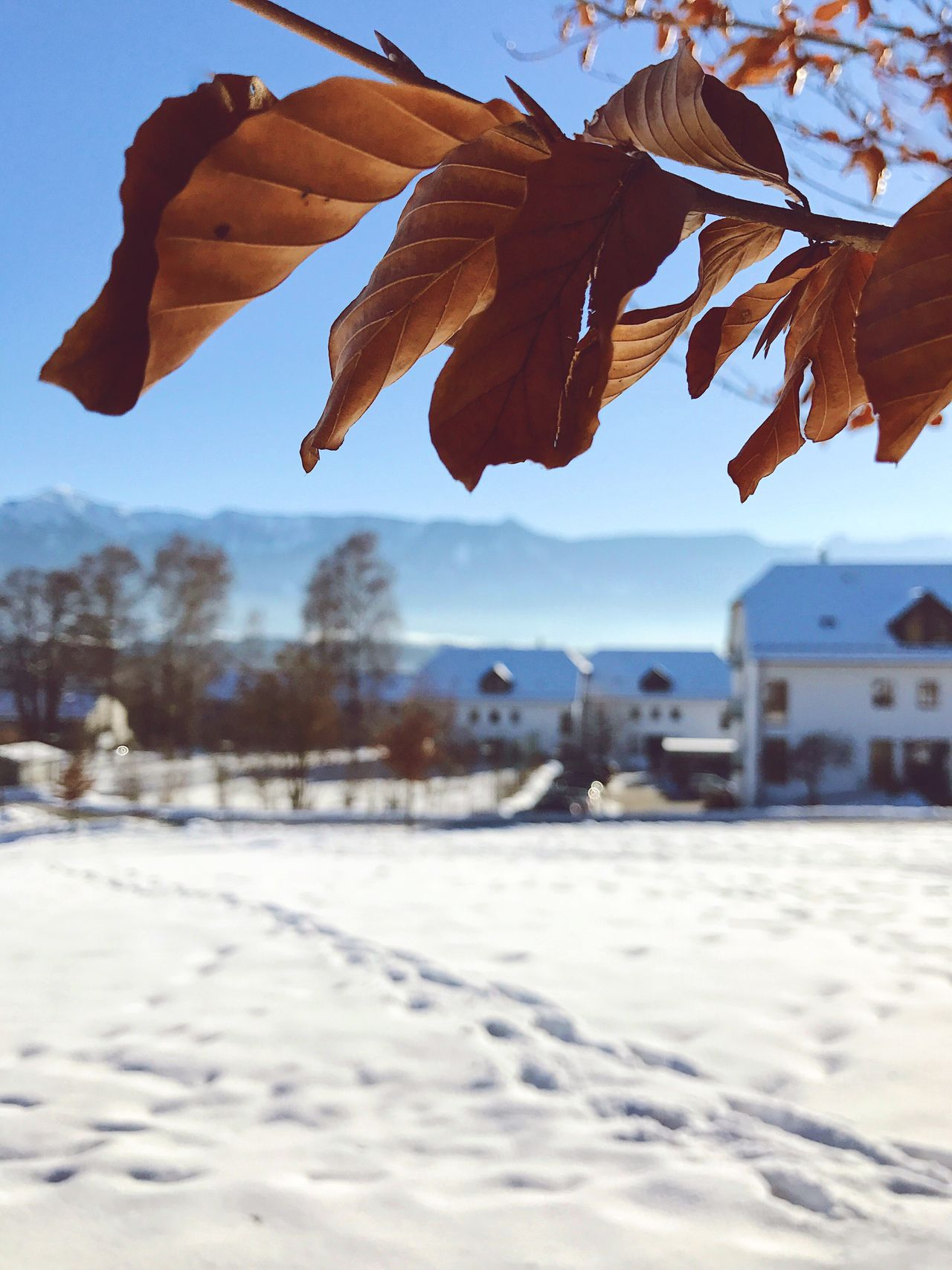 Weather IPhoneography Travel Germany Bavaria VSCO Snow Winter