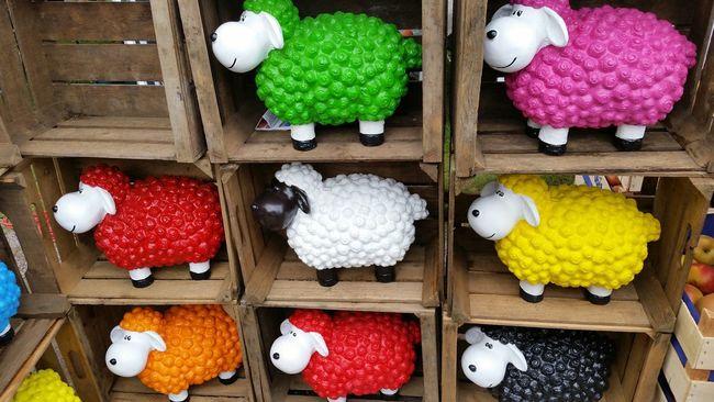Schäfchenzeit ... sheep time :-) Schafe Sheeps Colorful Color Photography Garden Decor Sheep Statue Eyeem Photography EyeEm The Week On Eyem Taking Photos Hello World EyeEm Gallery