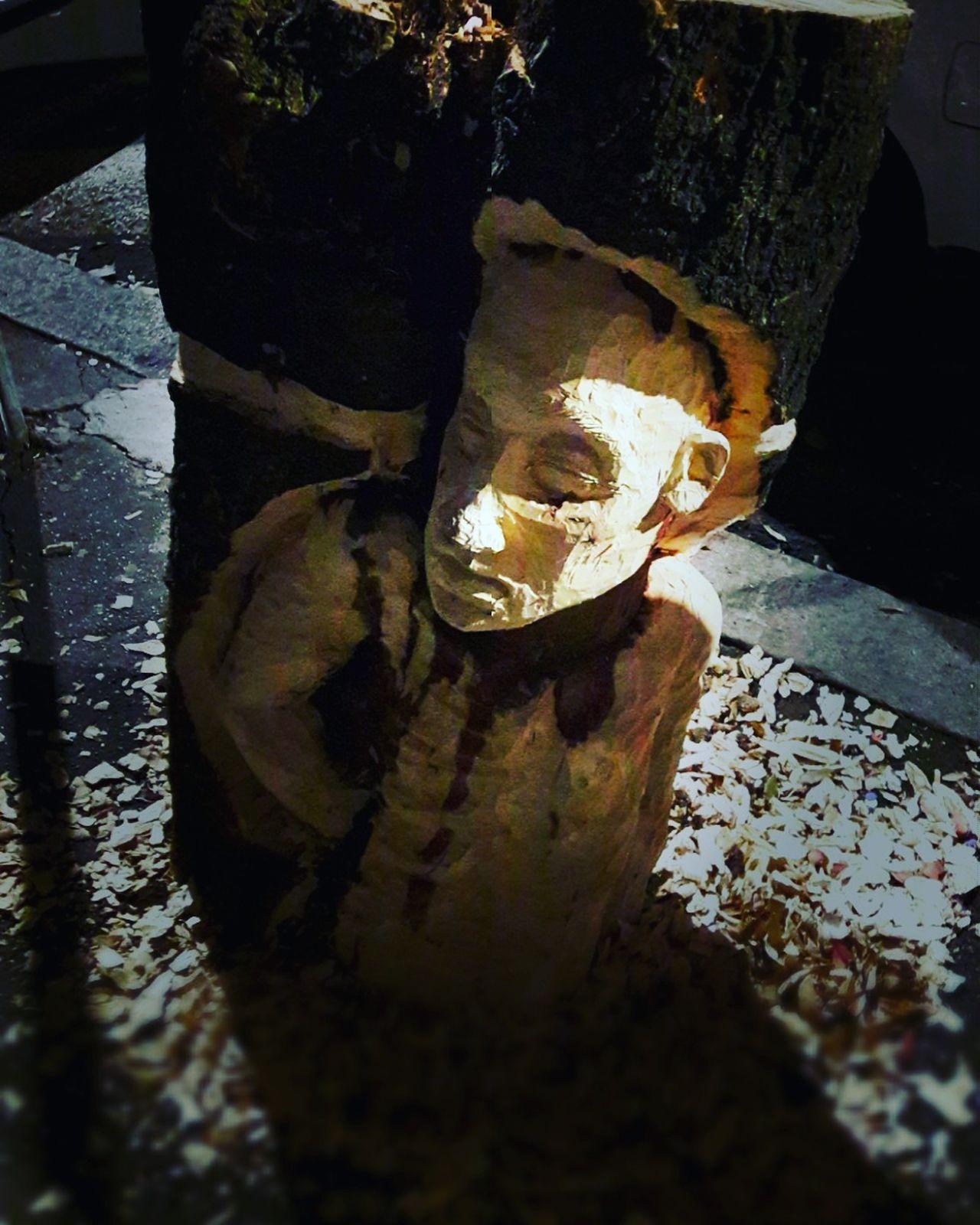 No People Shadow Day Tree Wood Legno Albero Tronco Sculpture Scultura Treecollection Woodwork  Legnolavorato Tronco Cortado Trees Tree Silhouette Wood Art Legnoart Troncofilosofiadivita Tree Trunk Wood - Material Legno Wood Tronco Vivo Sculpture Garden Sculture