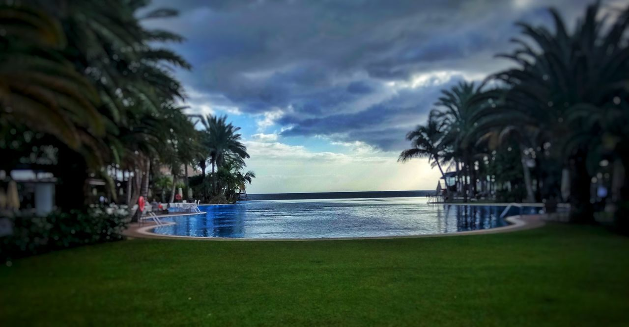 Never ending pool. Beach Beauty In Nature Cloud - Sky Day Grass Growth Horizon Over Water Nature Never Ending No People Outdoors Palm Tree Scenics Sea Sky Tranquil Scene Tranquility Tree Water