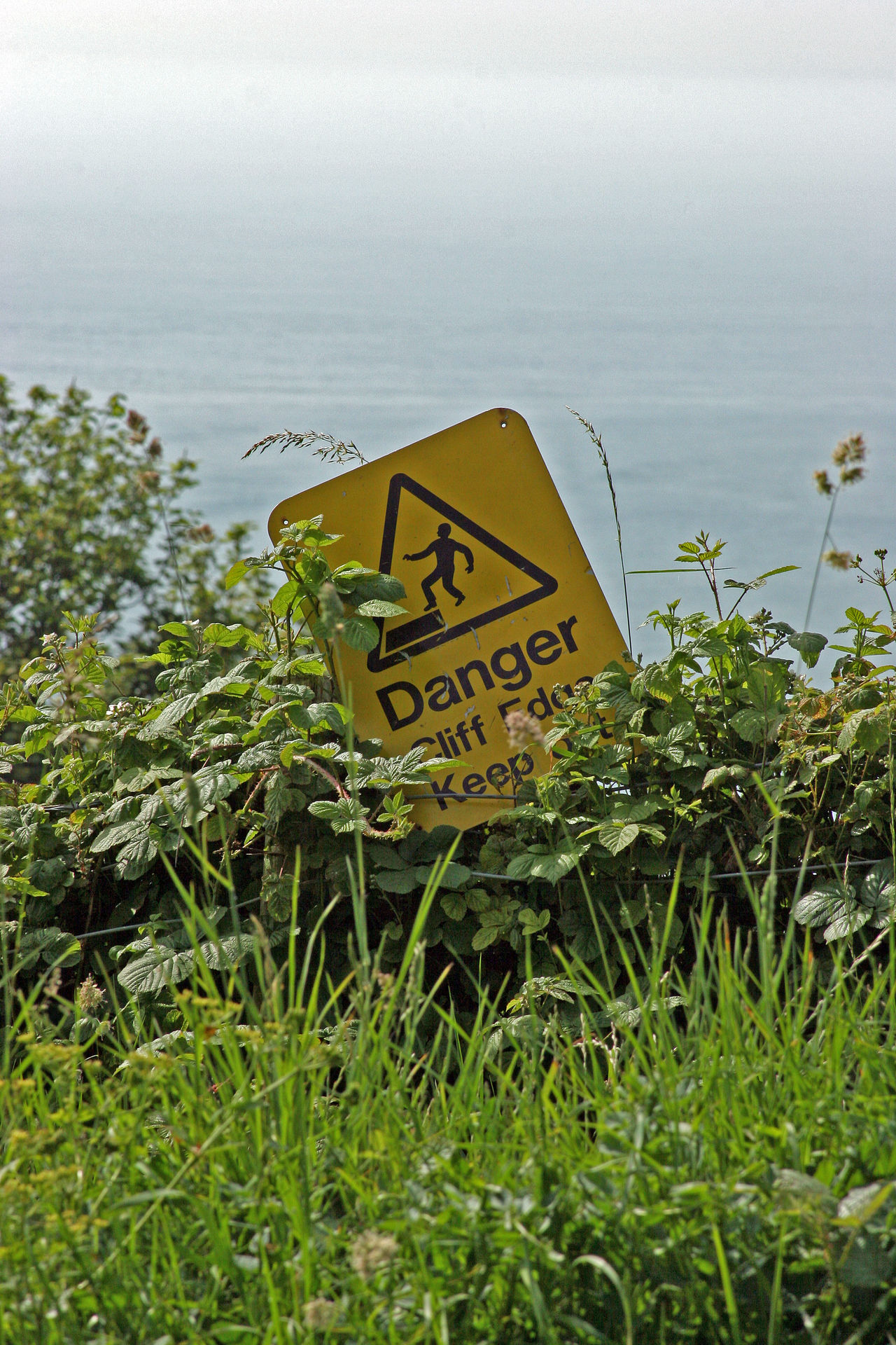 Beauty In Nature Cliff Cliffs Danger Sign Danger Signs Day Fresh On Eyeem  Grass Dangerous Green Color Growth Danger Information Information Sign Nature No People Non-urban Scene Outdoors Plant Remote Scenics Sky Tranquil Scene Suicide Water