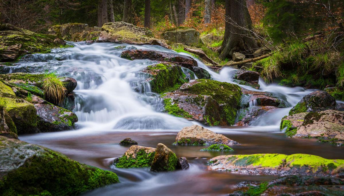 Harz Mountains, Germany Nature Photography Bodefall Braunlage Harz Bilder Natur Wasserfall Wildwasser