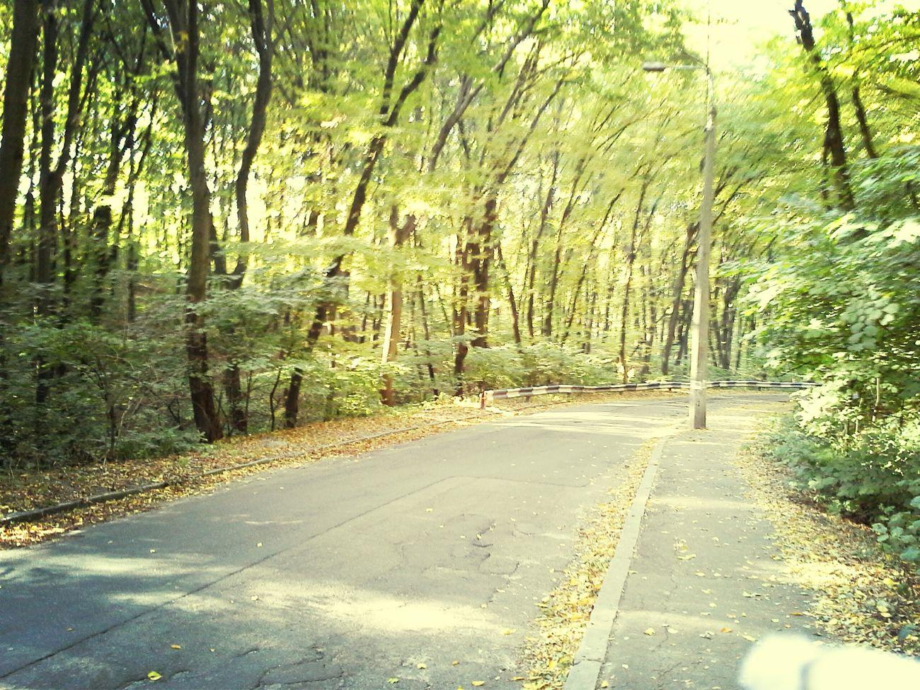 Morning road.