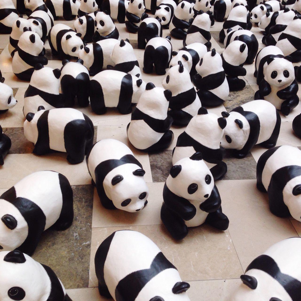 Beautiful stock photos of panda, Abundance, Animal Representation, Backgrounds, Black Color