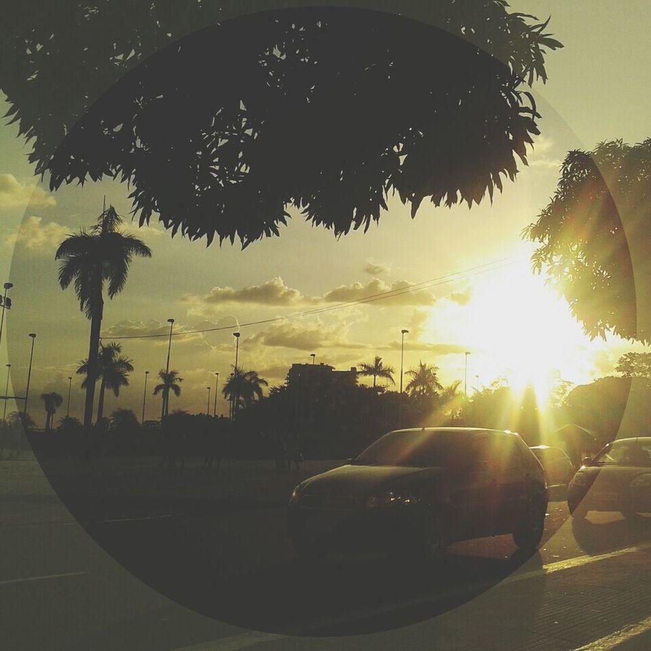 sunset Relaxing Walking Around