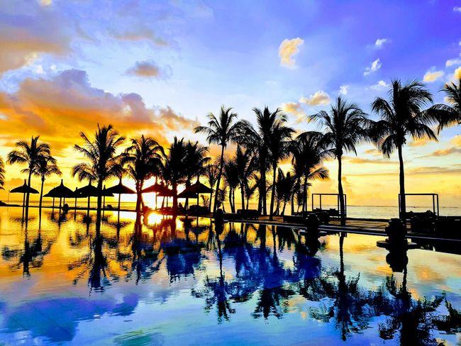 Sunset Mauritius Mauritius VisionVoyage2017 Water Swimming Pool Sea Tree Silhouette Sunset Sky Beach Horizon Over Water
