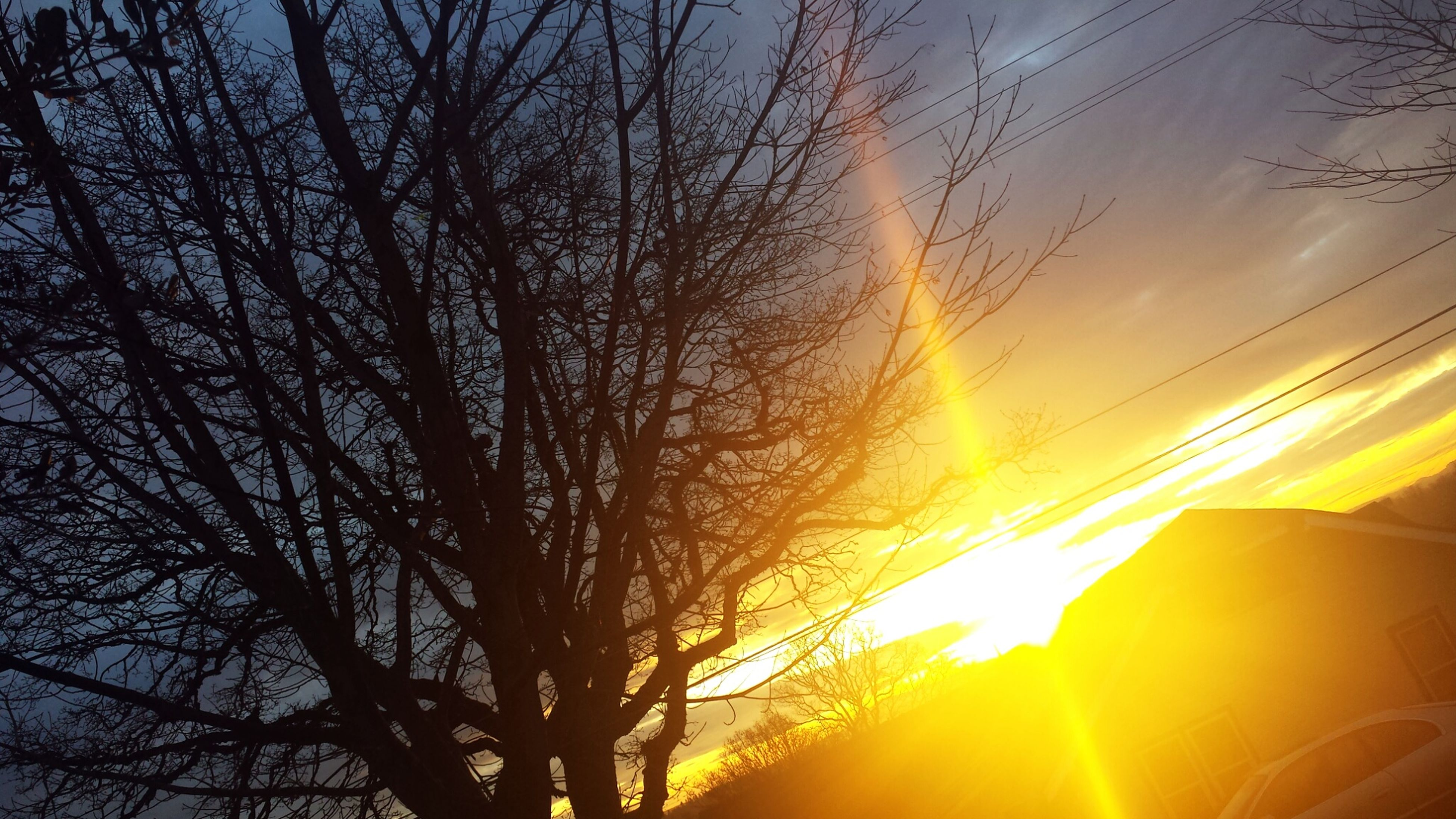 sunset, silhouette, bare tree, sky, tree, sun, orange color, low angle view, beauty in nature, scenics, tranquility, branch, nature, cloud - sky, tranquil scene, sunlight, idyllic, back lit, outdoors, yellow