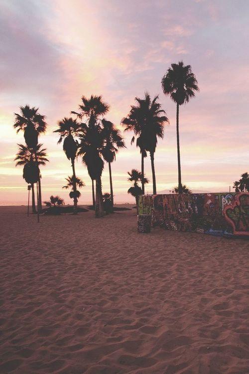 Being A Beach Bum Sunset Graffiti