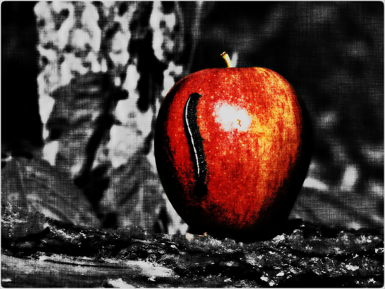 An Apple A Day Original Photography Apple Caterpillar Wall Art Color Splash Drawn Edit Eyem Gallery Fruit Photo CollectionApple a Day Photo Collection - Drawn Edit, Apple with Caterpillar