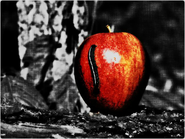 An Apple A Day Original Photography Apple Caterpillar Wall Art Color Splash Drawn Edit Eyem Gallery Fruit Photo CollectionApple a Day Photo Collection - Drawn Edit, Apple with Caterpillar
