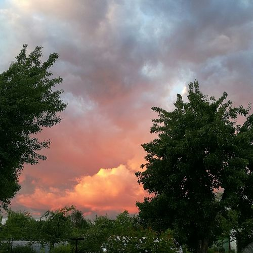 Cloud - Sky Realcolors Amazing View Lovewhereyoulive Justopenmyeyes Unbelievable Clouds