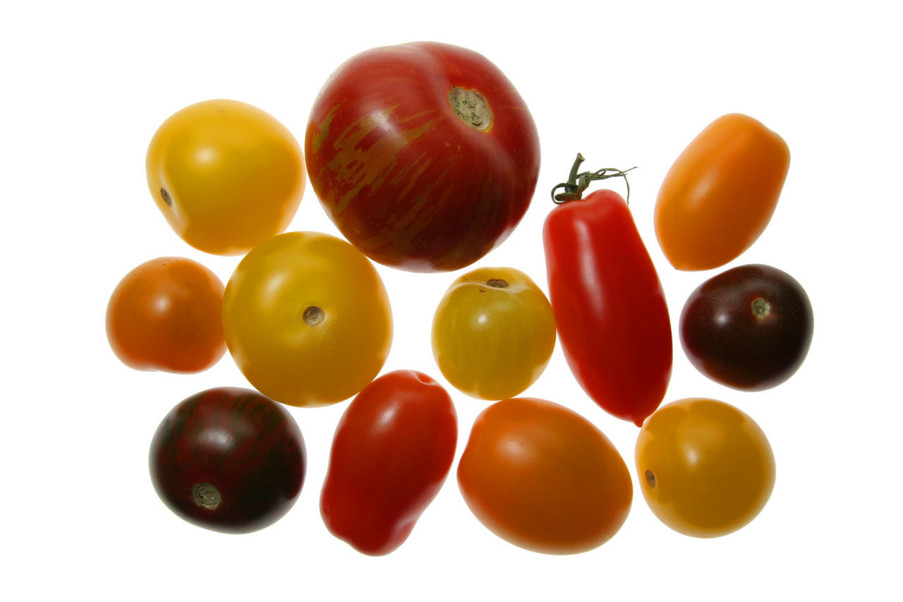 Multi Colored Tomatoes Against White Background