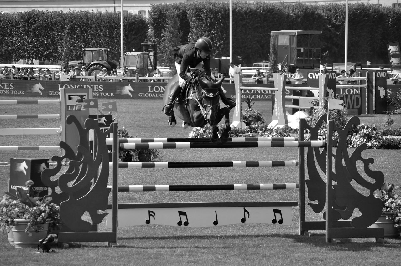 Concours hippique Chantilly Cheval Concours Hippique Haie Horse Photography  Horses Outdoors Saut