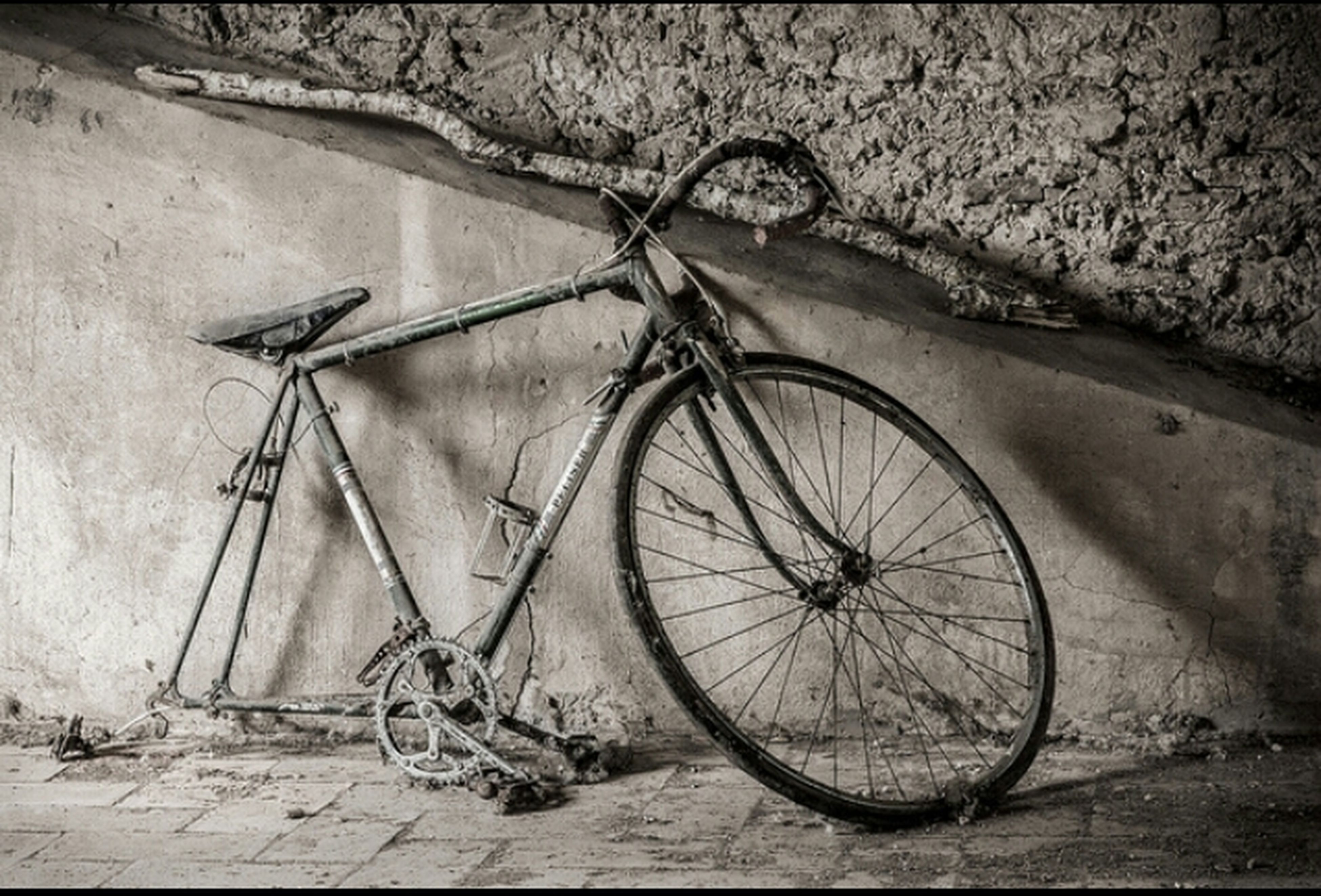 bicycle, mode of transport, transportation, stationary, land vehicle, parked, parking, wheel, wall - building feature, cycle, leaning, no people, wall, outdoors, day, abandoned, absence, shadow, wood - material, sunlight