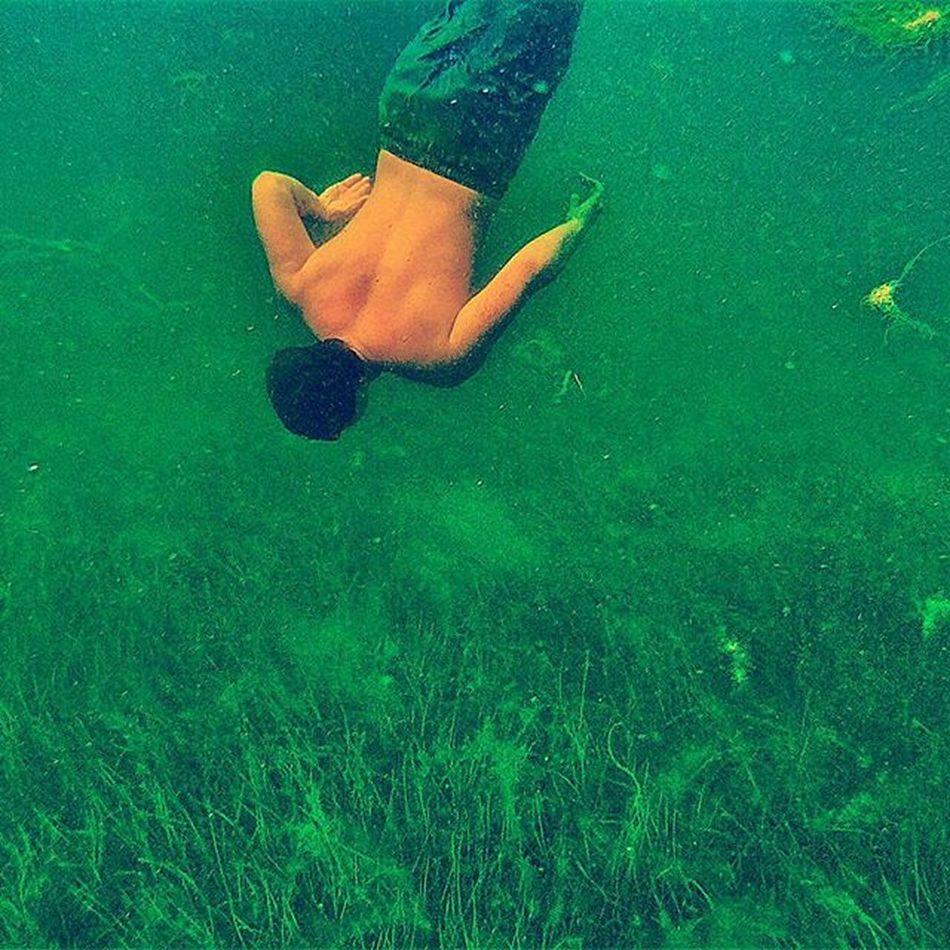 Freesub Serbestdalış Ocaklar Erdek Underwaterphotography SUALTİ Deniz