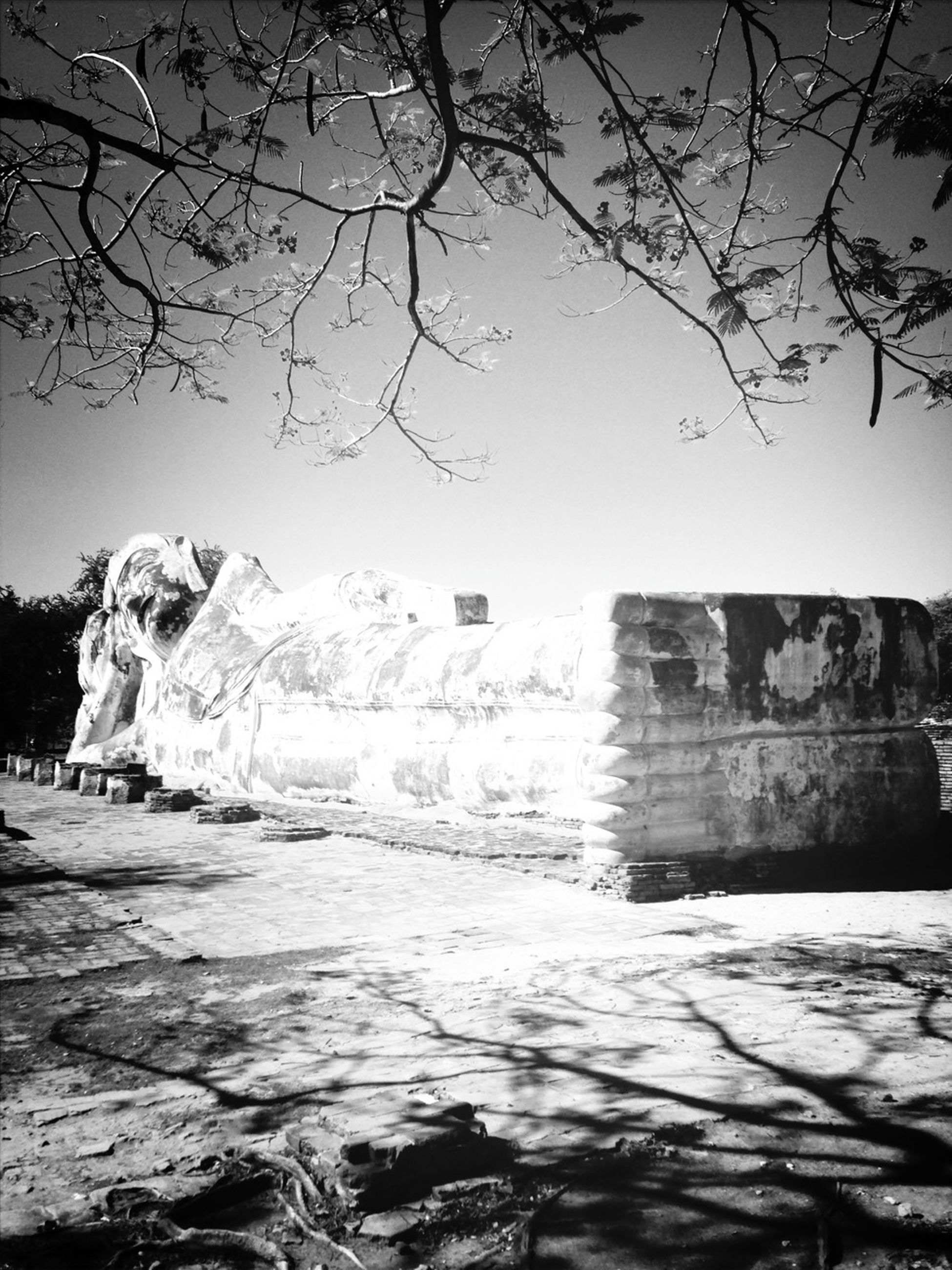 bare tree, built structure, architecture, tree, clear sky, building exterior, history, rock - object, sky, tranquility, branch, nature, day, rock formation, old ruin, travel destinations, the way forward, outdoors, stone wall, no people