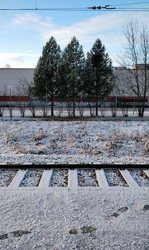 Railway Track Trees Symmetry Primenumbers Prime Numbers Cold Temperature Day Winter Outdoors Snow No People Tree