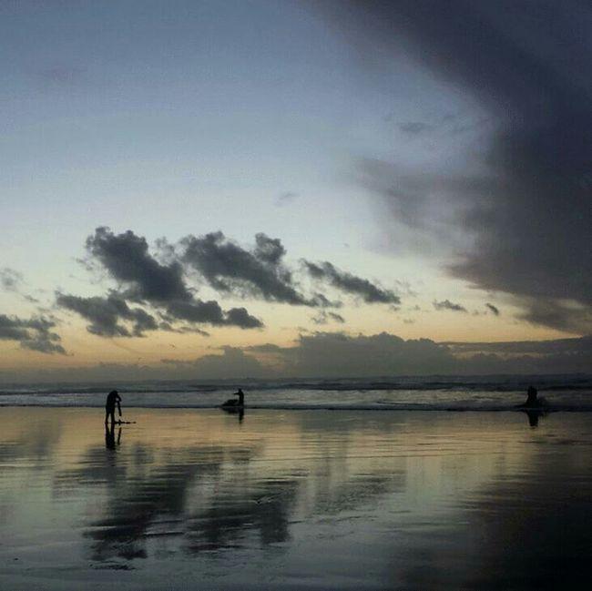 Beach Ocean Razor Clams Silhouette