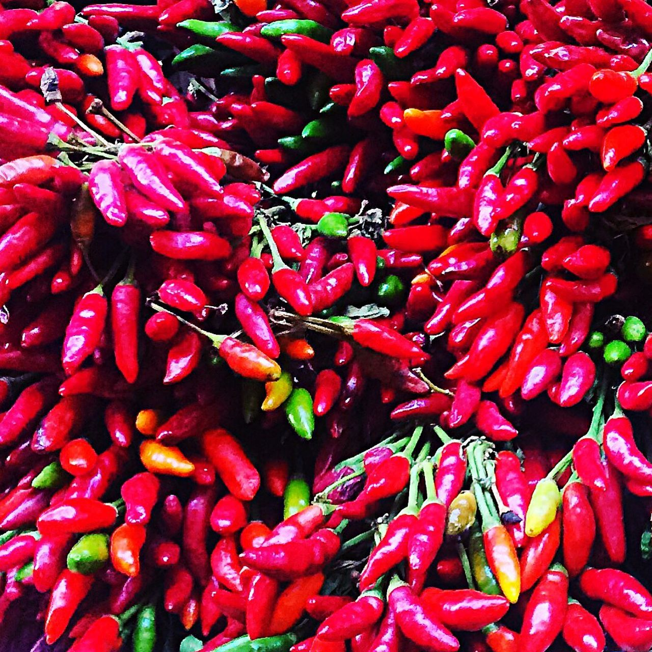 Red Taking Photos Nature Chillipepper Peperoncino Magic Red Red Chili Pepper Freshness Food And Drink Food Full Frame Spice Backgrounds Vegetable Chili Pepper Healthy Eating Large Group Of Objects Abundance For Sale Market Retail  No People Close-up Ingredient Chili  🌶