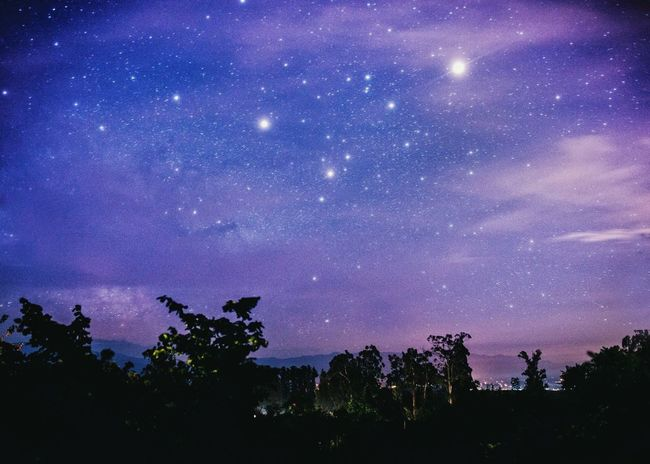 Sky Night Tree Star - Space Milky Way Blue Astronomy Constellation Nature No People Outdoors Space Cloud - Sky Beauty In Nature Galaxy