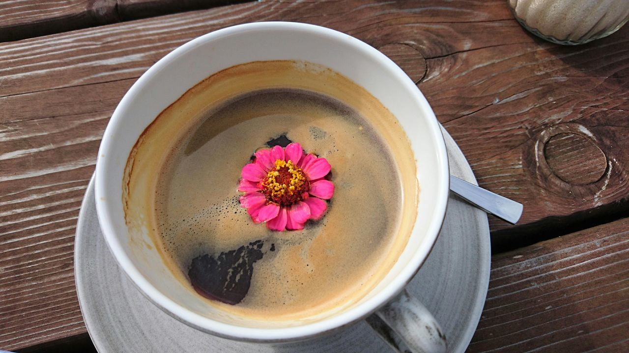 ShareTheMeal Flower Coffee Resttime Day Drink Resting No People Table