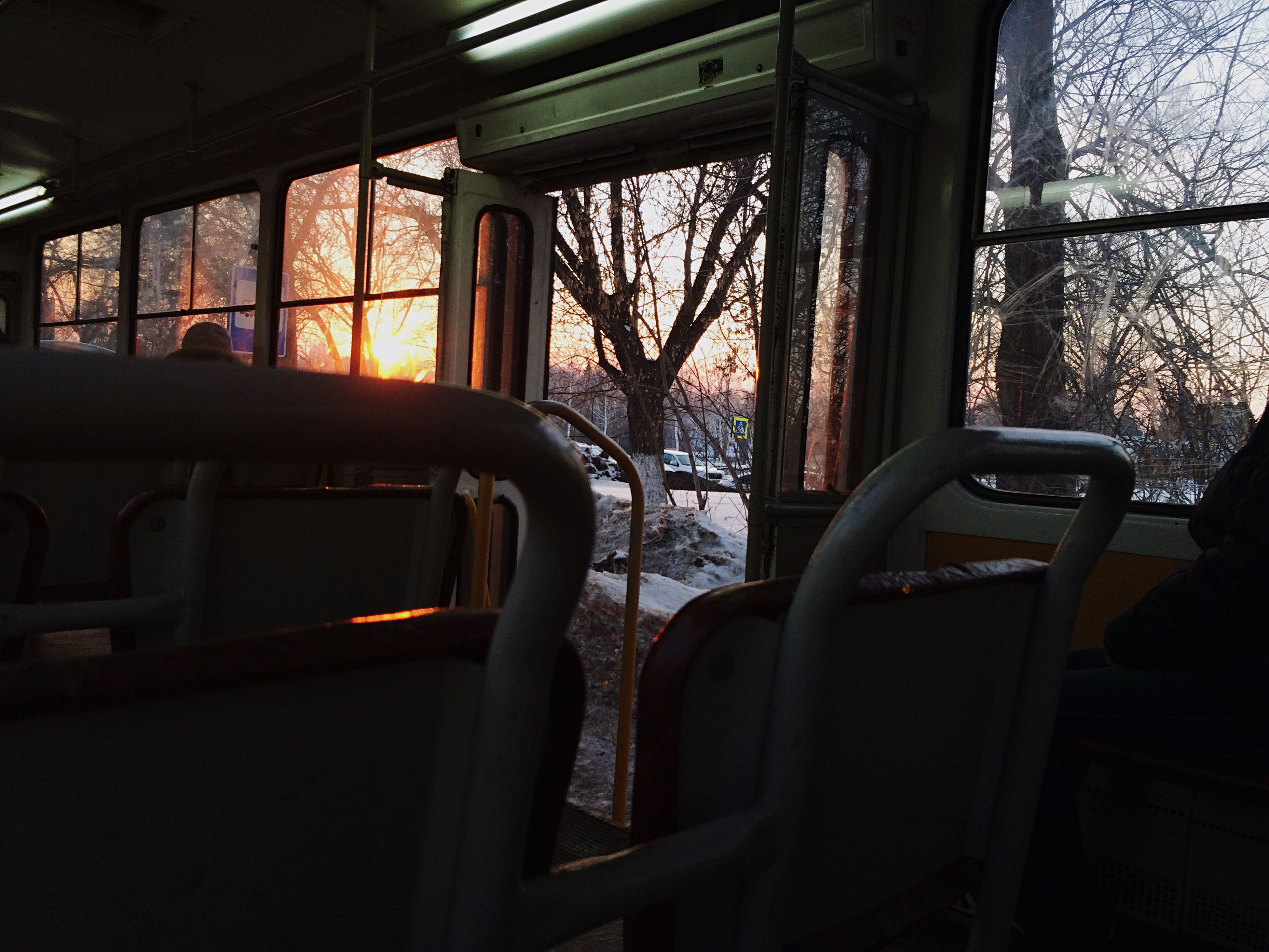 window, transportation, indoors, mode of transport, vehicle interior, car, land vehicle, glass - material, transparent, absence, tree, vehicle seat, empty, travel, no people, built structure, chair, sunlight, day, seat