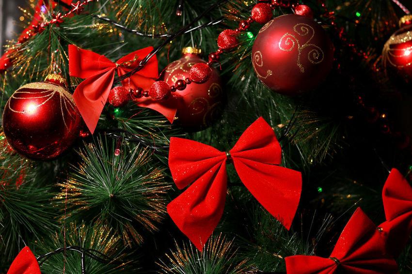 EyeEm Selects Christmas Christmas Tree Christmas Decoration Celebration Red Christmas Ornament Christmas Lights Tradition Holiday - Event