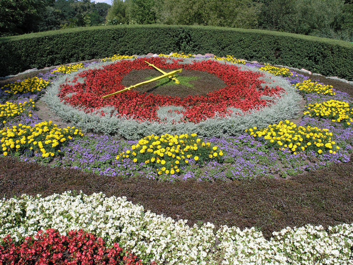 Ciechocinek Clock Clock Made From Flowers Flower Flowerbed Garden Gardening Time