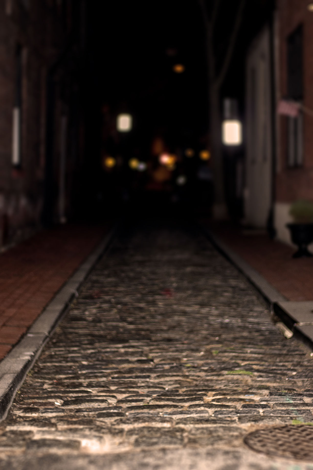 This is a shallow depth of field shot showing a cobblestone alleyway in south Philadelphia. Alleyway Architecture Built Structure City Close-up Cobblestone Cobblestone Streets Dof Historical Sights Illuminated Night No People Outdoors Pathway South Philadelphia Surface Level The Way Forward Tilt-shift