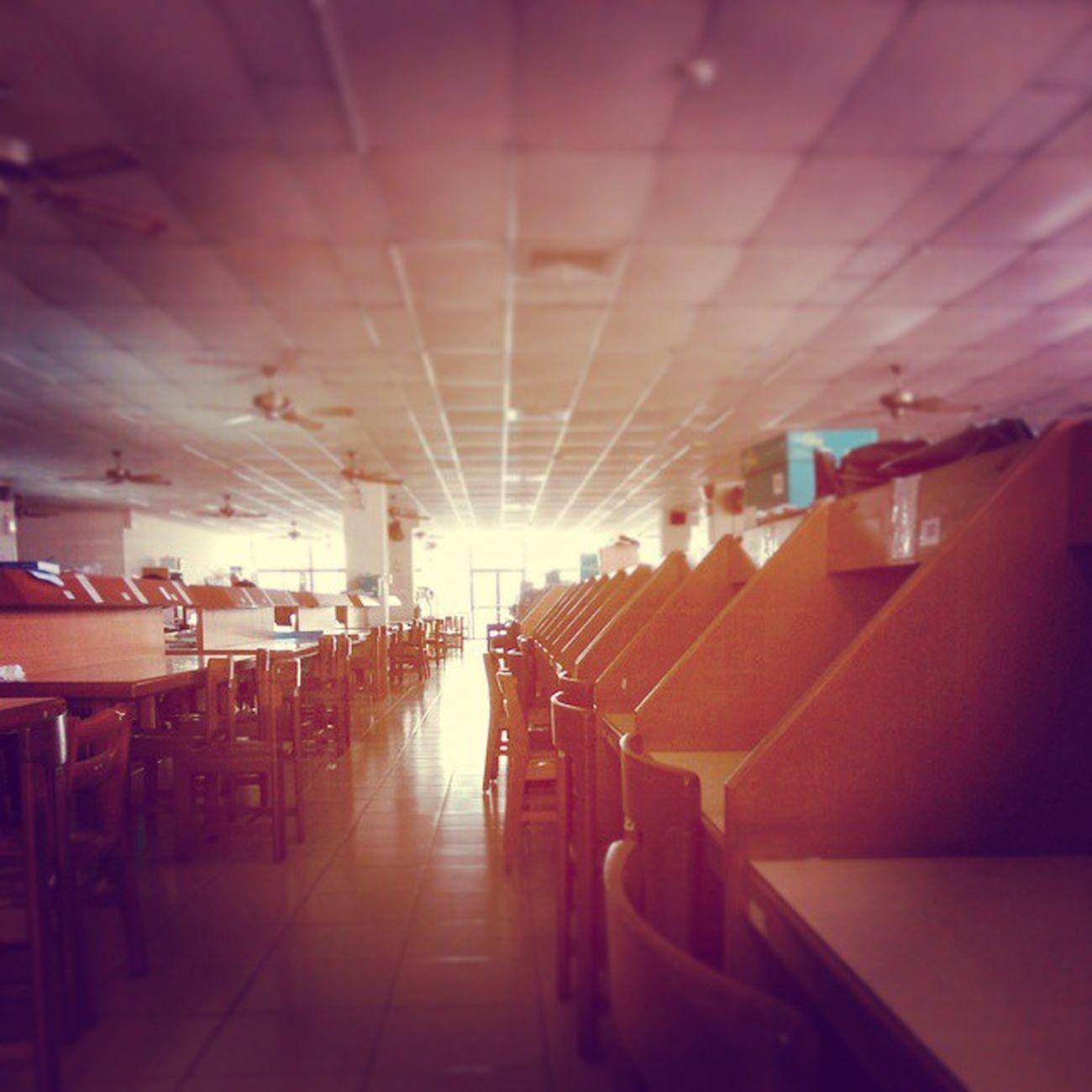 假裝認真來圖書館 睡覺zZZ Tunghai