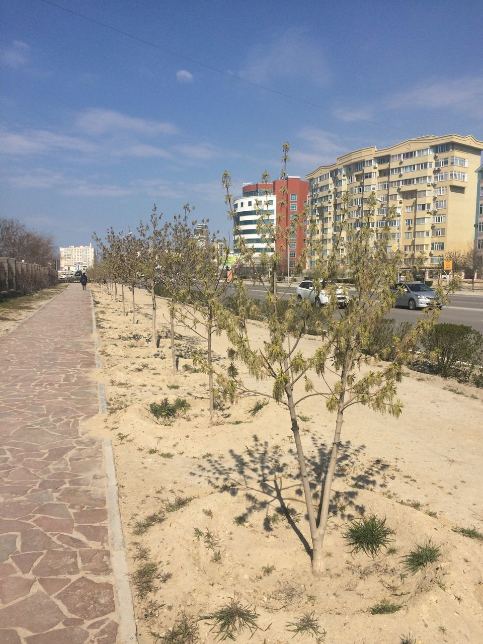 architecture, built structure, building exterior, sky, outdoors, day, sand, no people, tree, nature