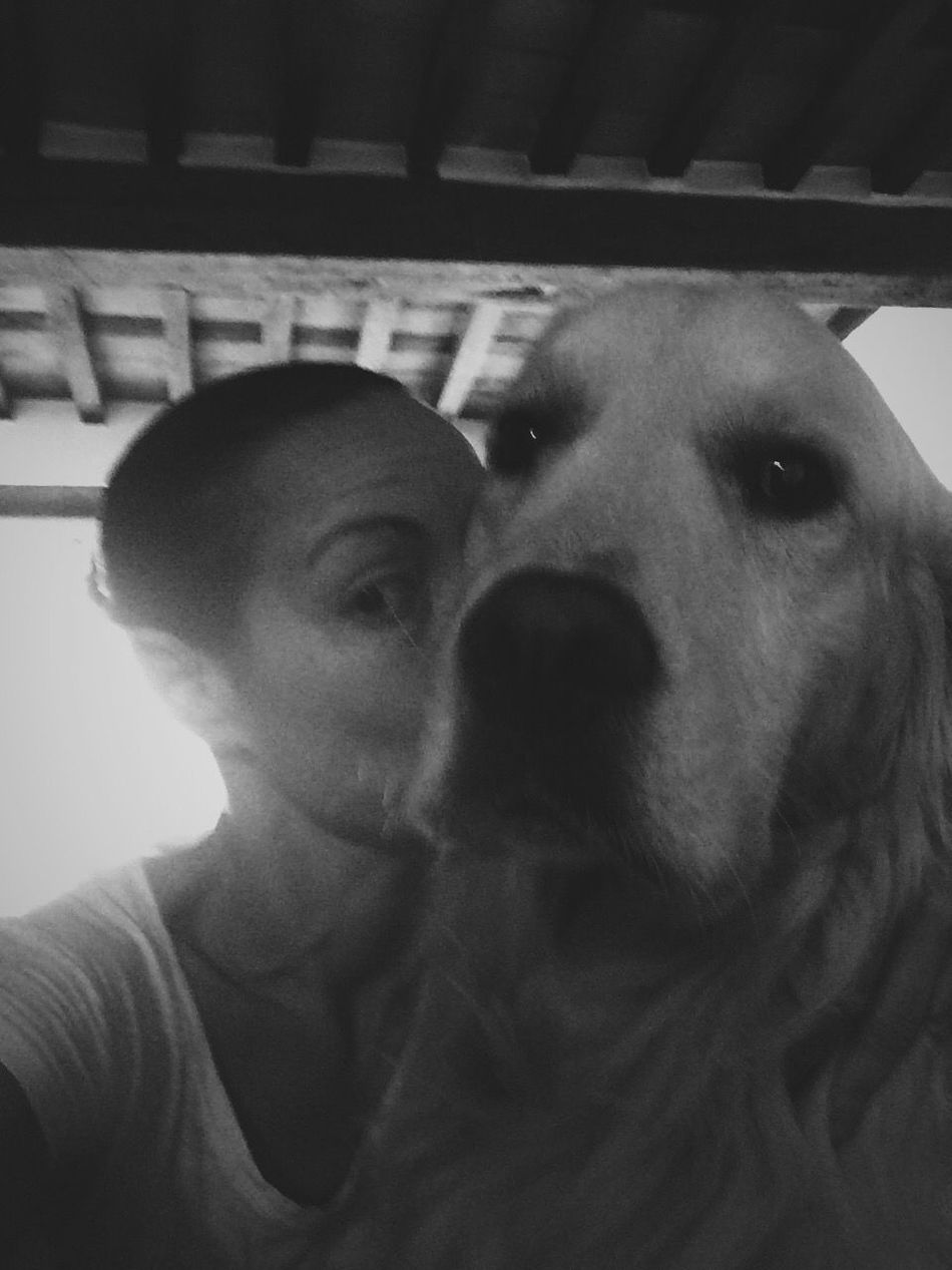 My half. ❤️ Love Without Boundaries Golden Retriever My Dog Is Cooler Than Your Kid. Ghiro I Love My Dog Bestfriend EyeEm Dogs IPhoneography