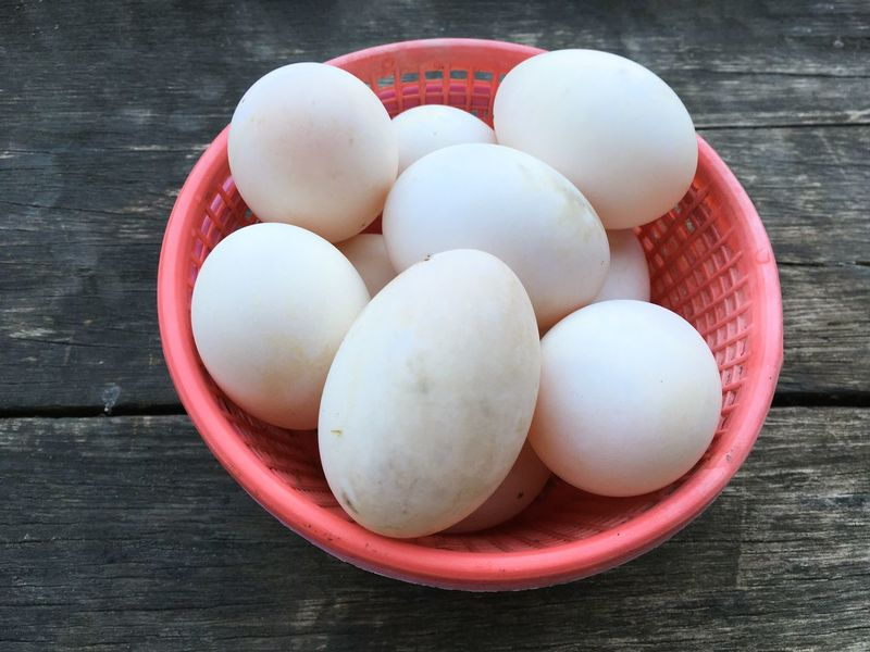 Raw Bowl Close-up Day Duck Egg Egg Eggs Food Food And Drink Freshness Healthy Eating High Angle View Indoors  No People Table Wood - Material