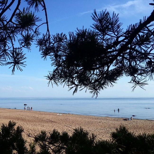 Россия Питер СанктПетербург финскийзалив море пляж песок небо sea russia sky beach sand saintpetersburg облака clouds