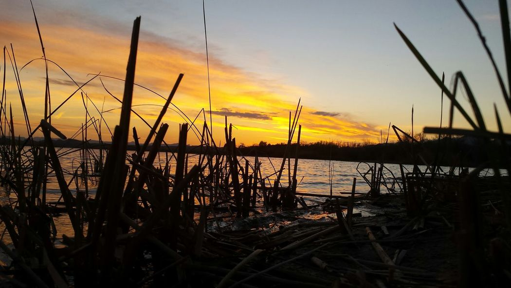 Nofilter Beautiful Mesquitebay Lakehavasu Sunsets Havasu