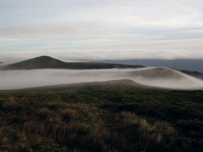 Misty Dreamlike Mountain Remote Moors Highlands Flores Island Azores Morro Alto Naturepark Foggy Mountains Foggy Morning Rock Formation