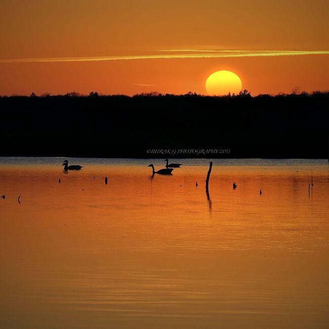 Sunset Nature Sky Taking Photos
