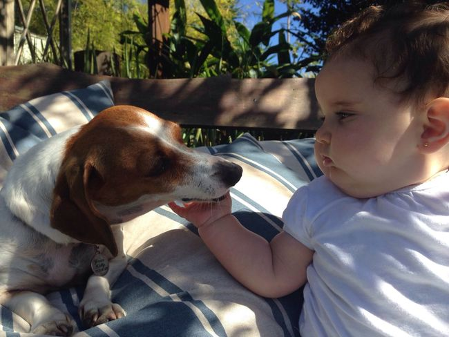 Lovely Pets Are Family Pets Lover Baby And Dog Better Together