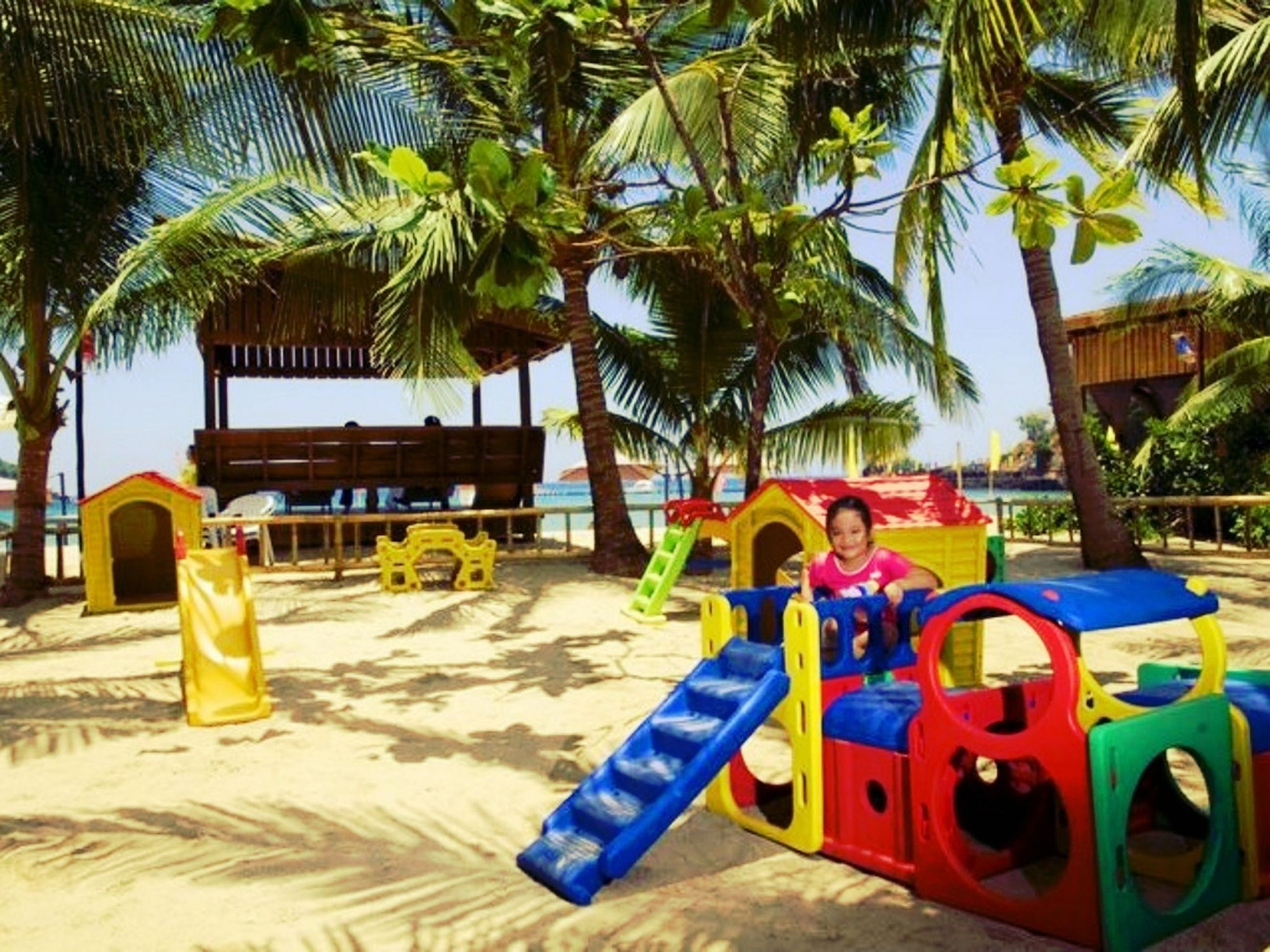 tree, palm tree, built structure, architecture, yellow, absence, day, chair, building exterior, blue, multi colored, beach, sunlight, sand, outdoors, childhood, no people, table, playground, empty