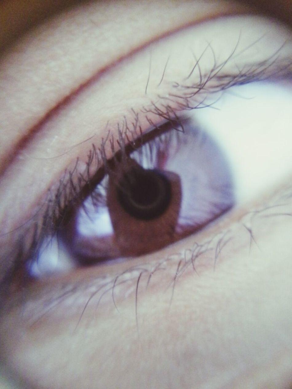Brown Eyes Check This Out Hello World Iyapayao
